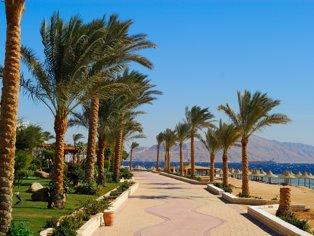 Last minute Sharm El Sheikh