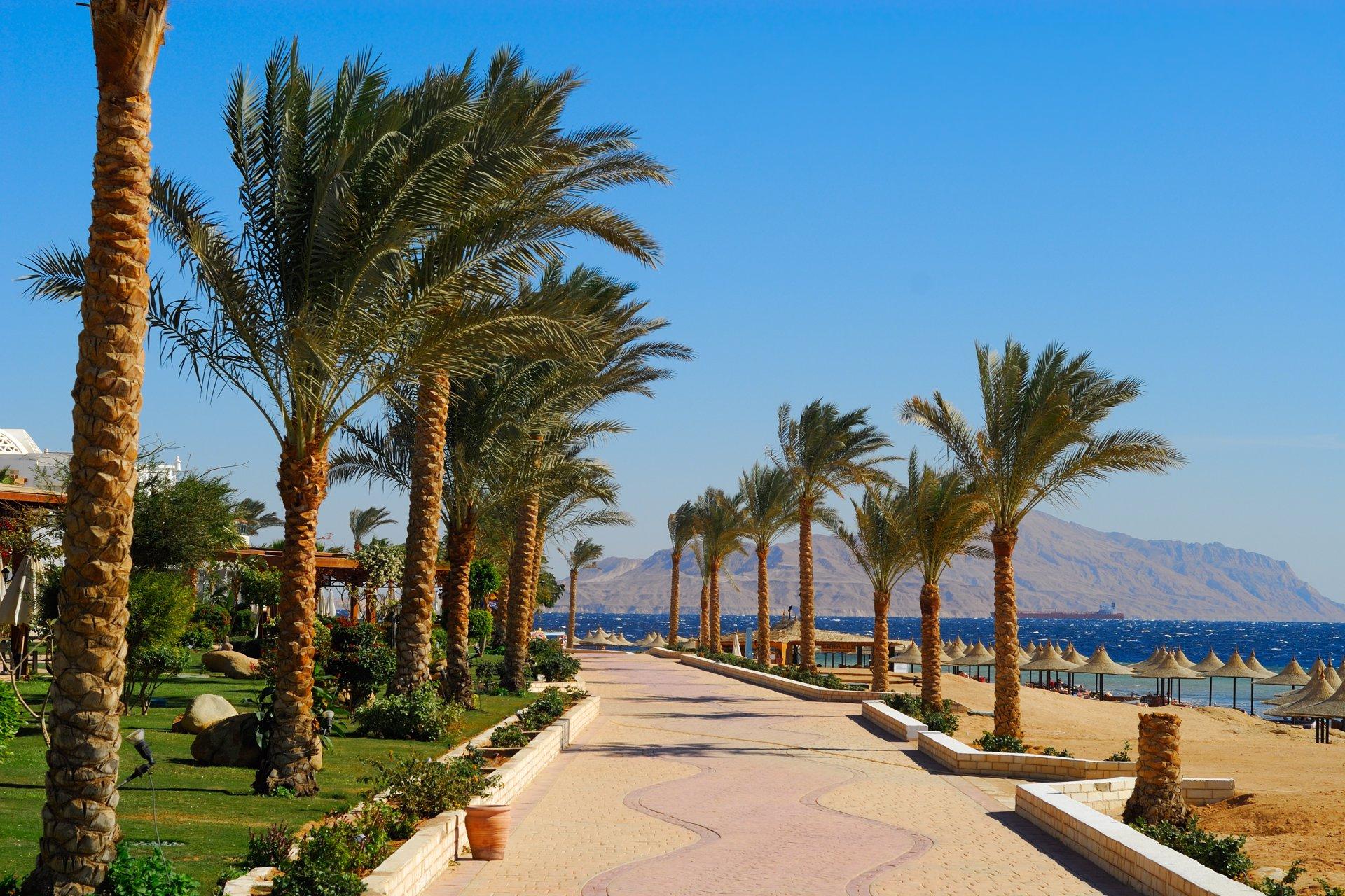 """Résultat de recherche d'images pour """"Sharm El Sheikh"""""""