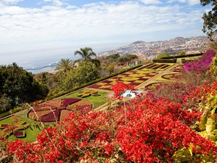 Vacances Funchal