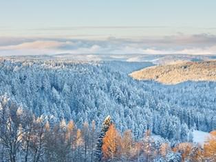 Vacance ski Baiersbronn