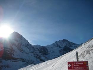 Skivakantie Grindelwald