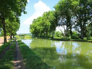 Vakantie Crêches-sur-Saône