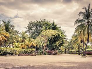 Vakantie Playacar