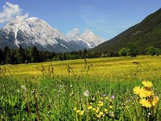 Vakantie Seefeld in Tirol