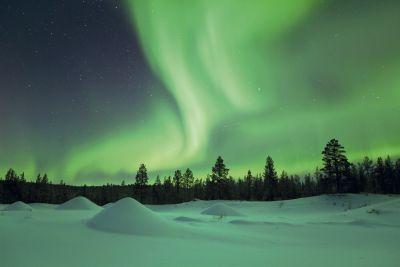 Verblijf met excursiepakket 'Adventurous Lapland'