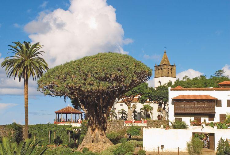 Jardin tropical tenerife tui for Tenerife jardin tropical