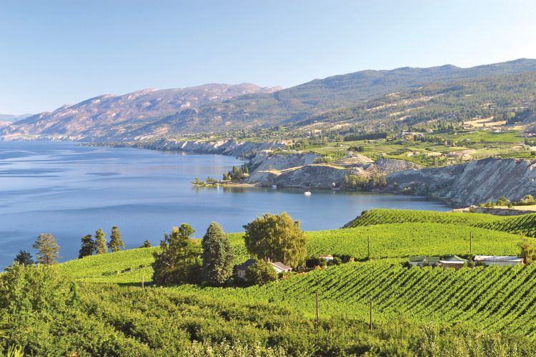 an introduction to the british columbias okanagan valley Adapting british columbia's approach to regional government: strategies for peripheral regions.