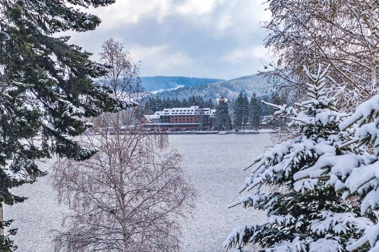Hotel maritim titisee in for t noire tui for Hotel design foret noire