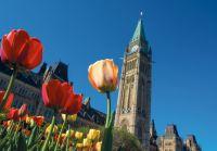 Oost-Canada Ontario en Québec, magie van twee culturen - foto 5