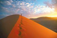 Namibië over leven in de woestijn  - foto 5
