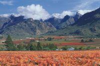 Zuid-Afrika tuin van eden  - foto 5