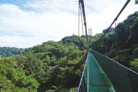 Costa Rica & Nicaragua een groene explosie - foto 6