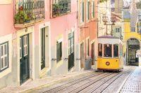 Portugal Centraal-Portugal, een beklijvende ervaring - foto 5