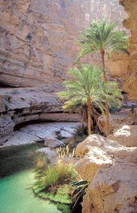 Oman & de Verenigde Arabische Emiraten schatkamer van de rijke Arabische cultuur - foto 6