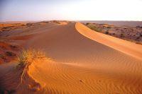 Oman & de Verenigde Arabische Emiraten schatkamer van de rijke Arabische cultuur - foto 5