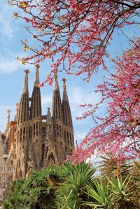 Spanje kennismaking met Barcelona - foto 4
